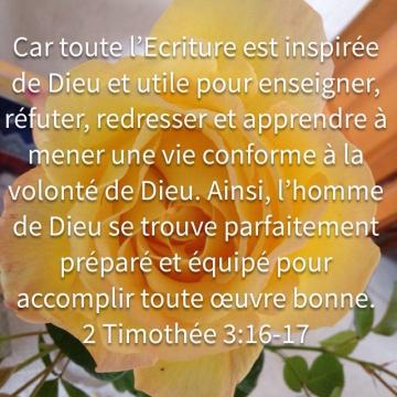 http://lesyeuxdanslescieux.hautetfort.com/media/00/01/2936618571.3.jpg