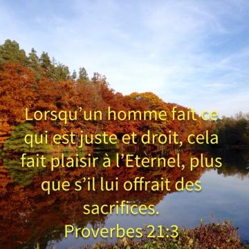 http://lesyeuxdanslescieux.hautetfort.com/media/00/01/2936618571.4.jpg