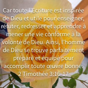 http://lesyeuxdanslescieux.hautetfort.com/media/00/02/2936618571.2.jpg