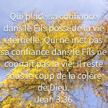 http://lesyeuxdanslescieux.hautetfort.com/media/02/02/2936618571.jpg